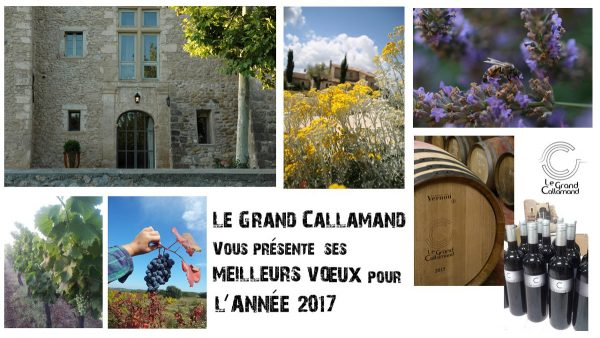voeux2017-1200