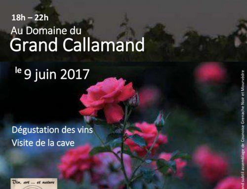 Le nouveau Rosé Grand Callamand : dégustation